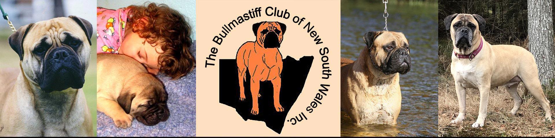 Bullmastiff Club of NSW Inc